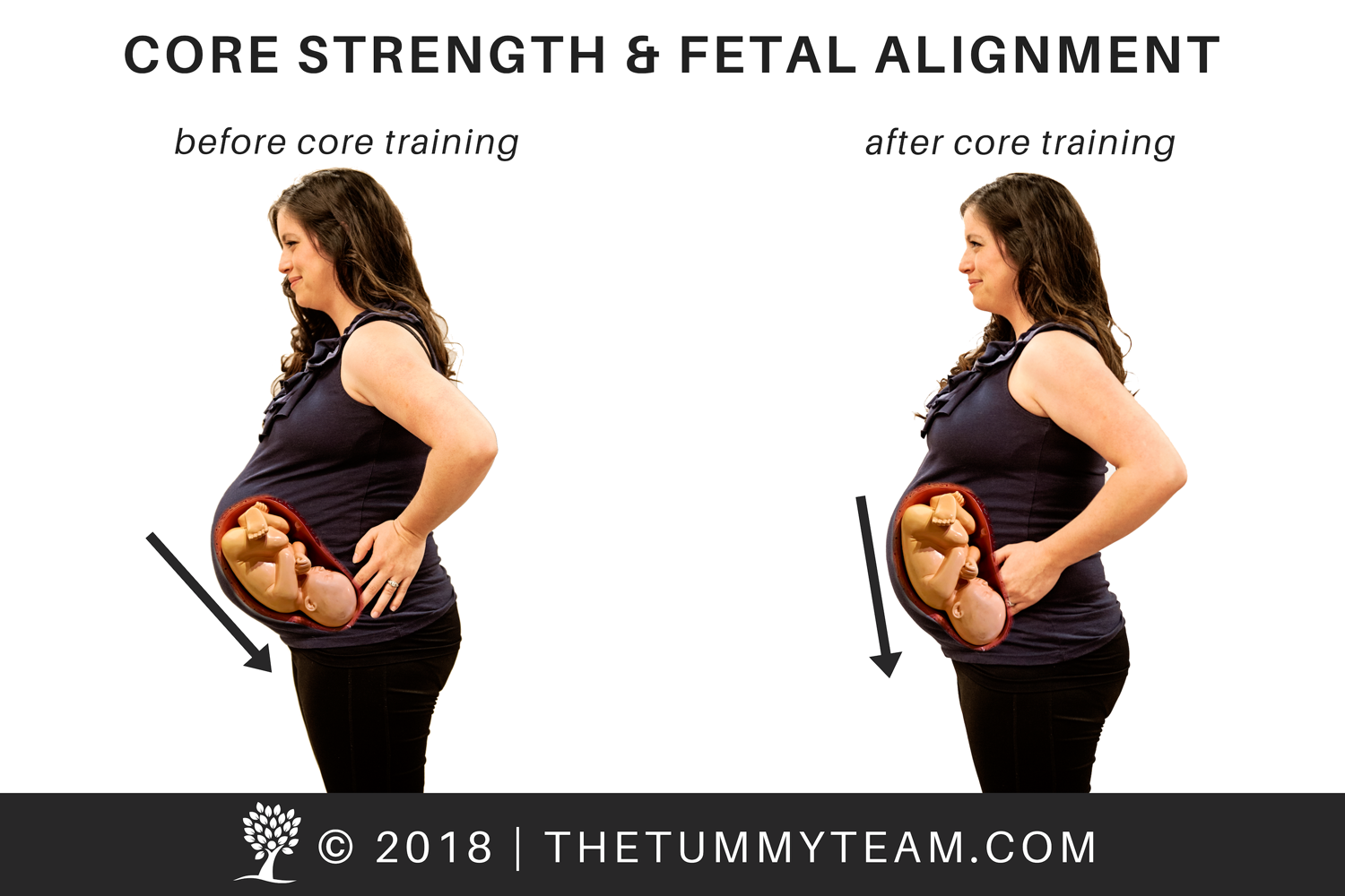 prenatal core training, copyright, The Tummy Team